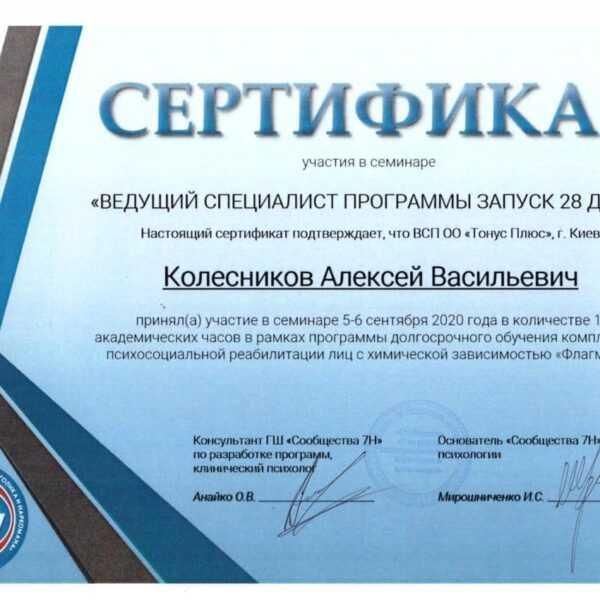 Колесников Алексей Васильевич - консультант психолог